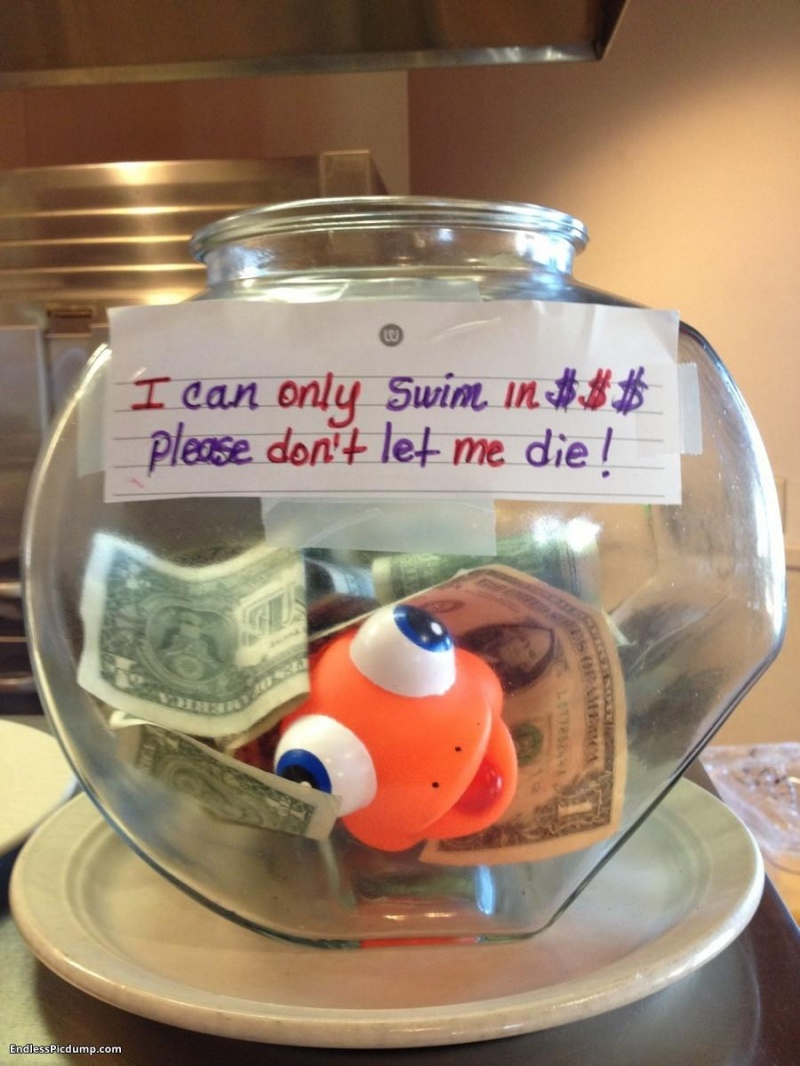 The Cutest of All Tip Jars-15 Funniest Tip Jars You'll Ever See