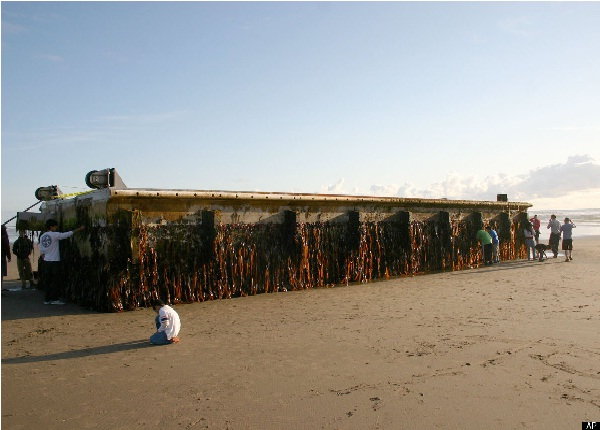 Shipping Containers-Bizarre Things That Washed Up On Beaches