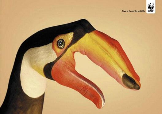 Let Them Quack-24 Creative WWF Ads