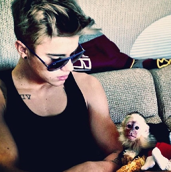 His monkey-Reasons Why Justin Bieber Is A Douchebag