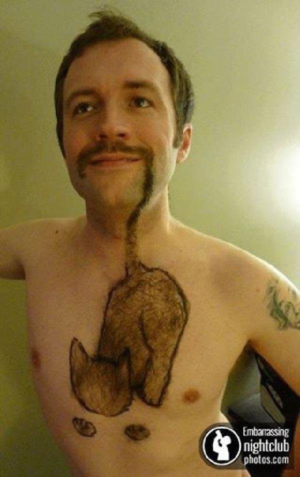 The cat-Amazing Body Hair Art