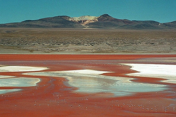 Red Lagoon, Bolivia-Most Amazing Lakes On Earth