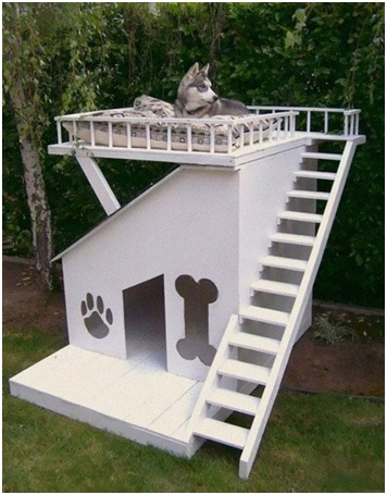 Dog House Fort-Pet Friendly Furniture Ideas
