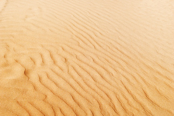 Sand-Gross Food Ingredients