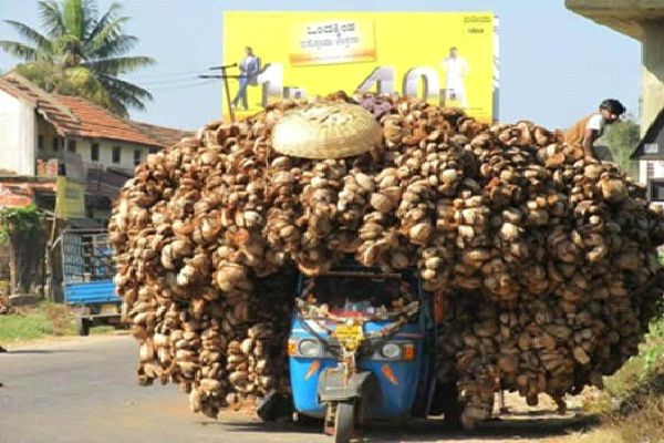 Overload-Small Vehicles, Big Loads