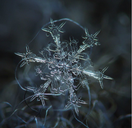 Star Ship-Awesome Close-Up Pictures Of Snowflakes By Alexey Kljatov