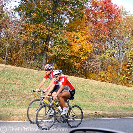 Bicycling-Sports Which Are Boring To Play