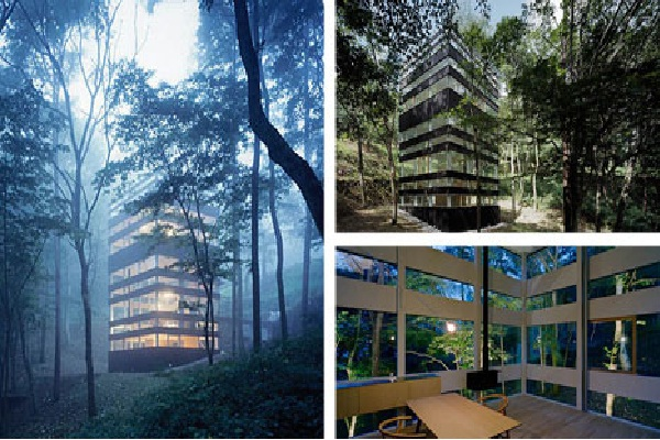 Forest Charm-Amazing Glass Houses
