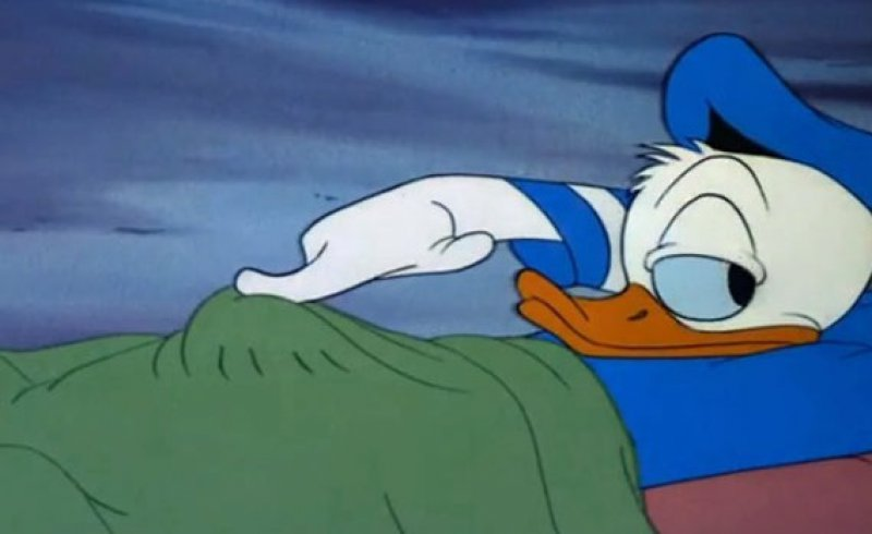 Donald Duck, What Are You Doing?-15 Hidden Inappropriate Jokes In Children Cartoons