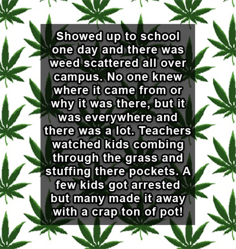 When Pot Rained from Nowhere-15 People Reveal The Craziest Scandals That Happened In Their High School