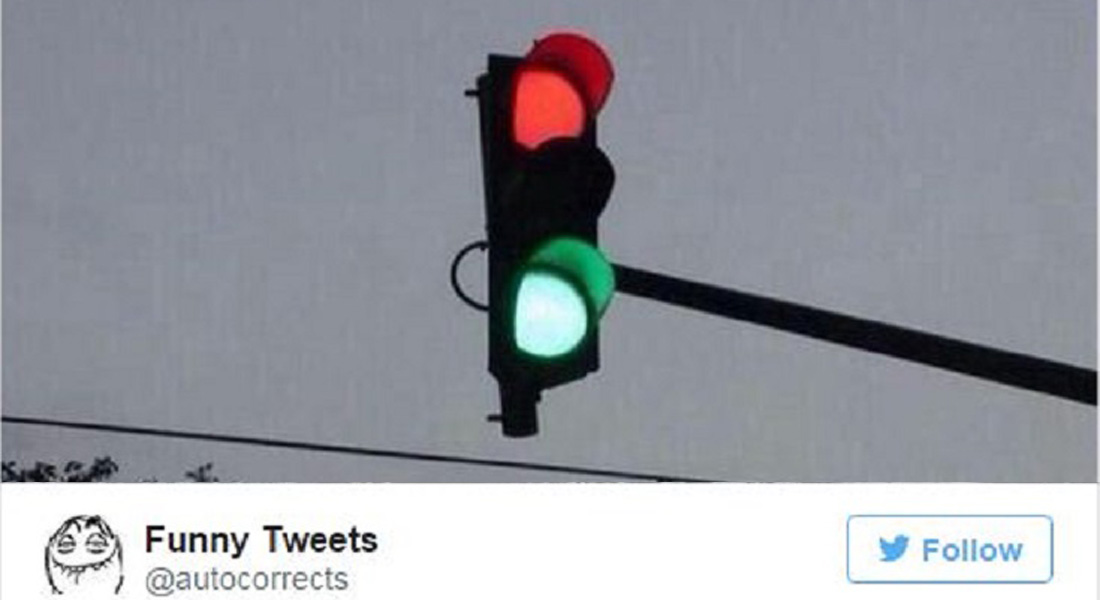 15 Funniest Tweets about Single Life