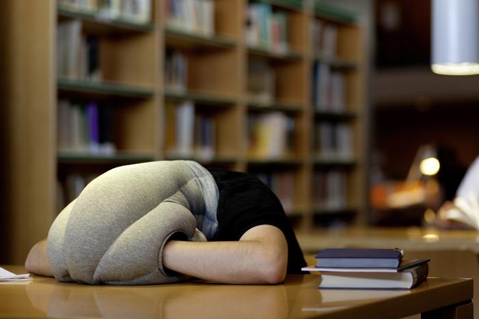 Ostrich Pillow-7 Bizarre Kickstarter Campaigns You Could Fund