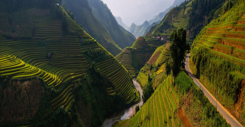 Asian Terrace Rice Fields-13 Awesome Pictures That Will Make Your Day