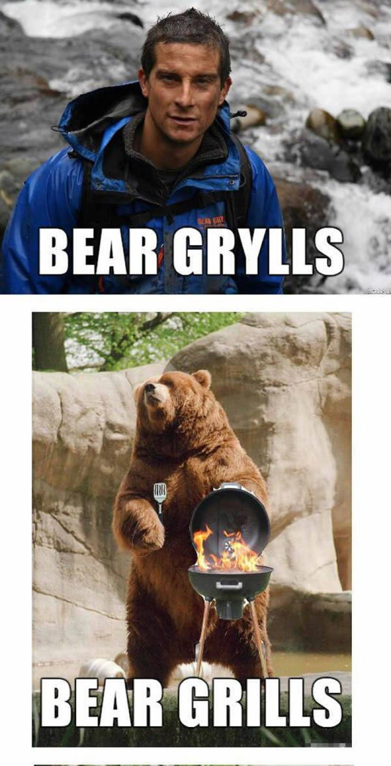 Bear Grylls Vs. Bear Grills-12 Hilarious Bear Puns That Will Make You Cry