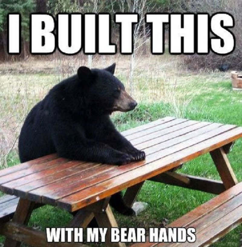 Bear Hands!-12 Hilarious Bear Puns That Will Make You Cry