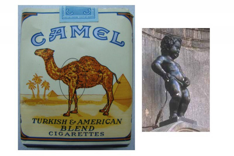 Camel Cigarettes Subliminal Message-12 Subliminal Messages In Popular Advertisements