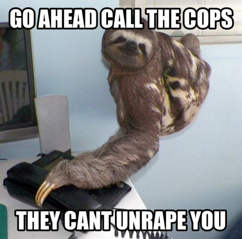 Go Ahead Call The Cops!-12 Funny Rape Sloth Memes That Will Make You Lol