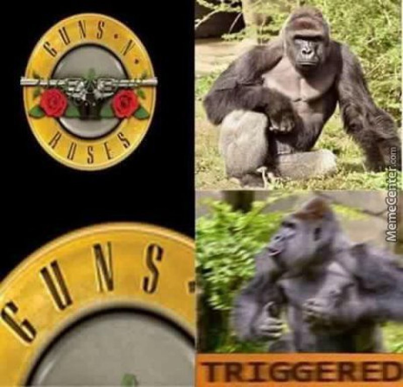 Harambe Triggered!-12 Hilarious Triggered Memes That Are Sure To Make Someone Triggered