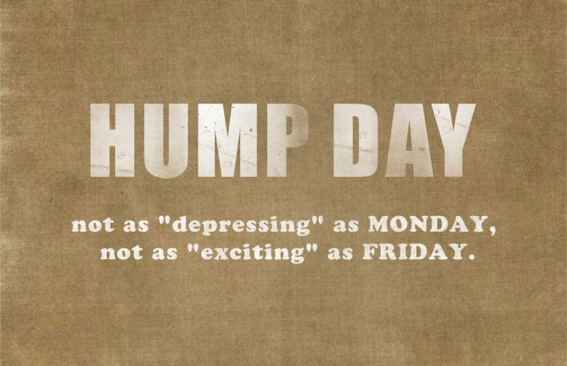 Hump Day Explained-12 Funny Hump Day Memes That Will Make Your Whole Week