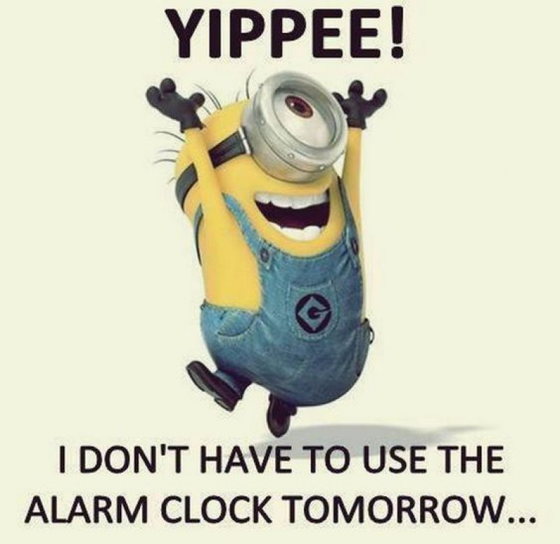 I Don't Have To Use Alarm Clock, Tomorrow!-12 Hilarious Friday Memes That Will Brighten Up Your Friday