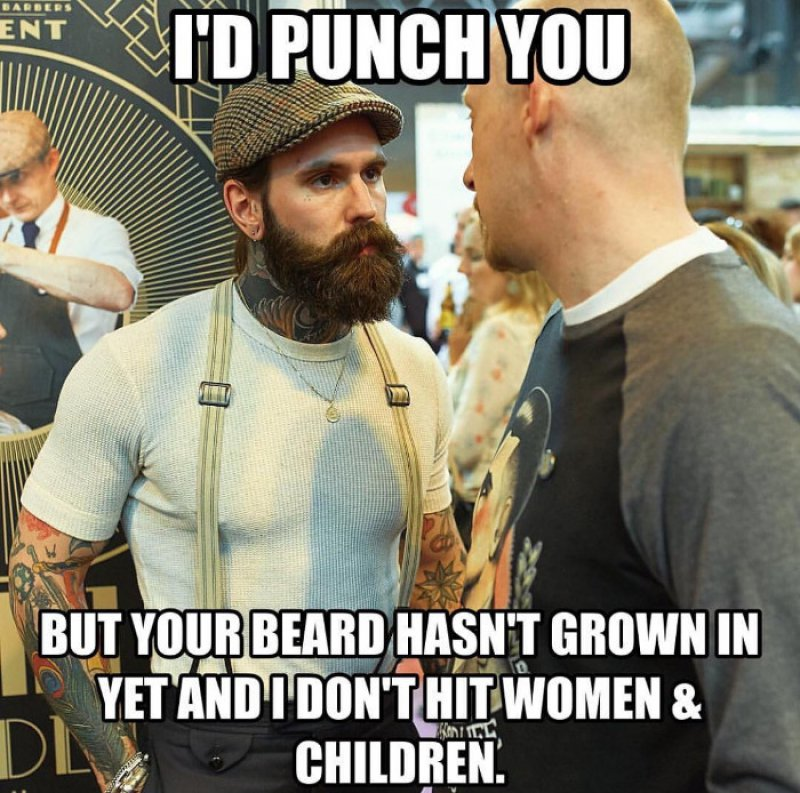 I Don't Hit Women And Children! -12 Funny Beard Memes That Will Make You Lol