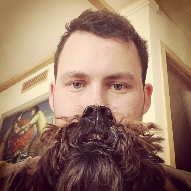 Long Coat Dog Breed = Awesome Dog Beard-15 Epic Dog Beards That Will Make You Want To Have One