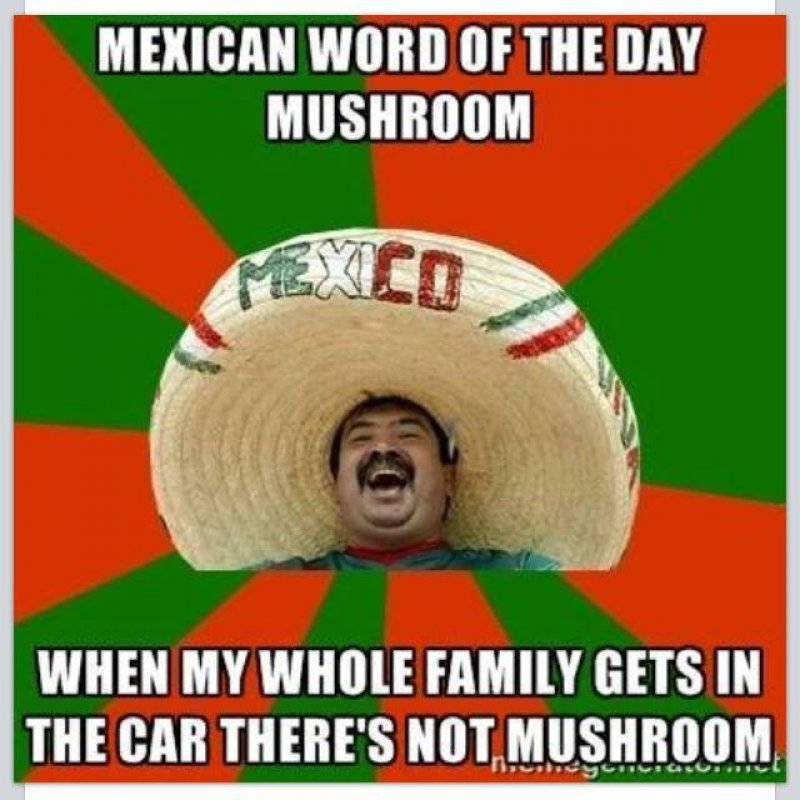 Mexican Word Of The Day: Mushroom-12 Funny Mexican Word Of The Day Memes