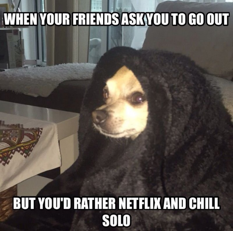 Netflix And Chill Solo!-12 Hilarious Friday Memes That Will Brighten Up Your Friday
