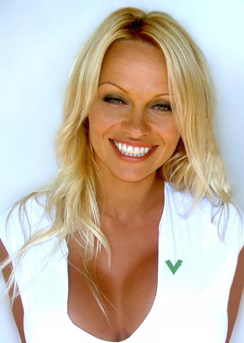 Pamela Anderson-12 Famous Blondes In Hollywood