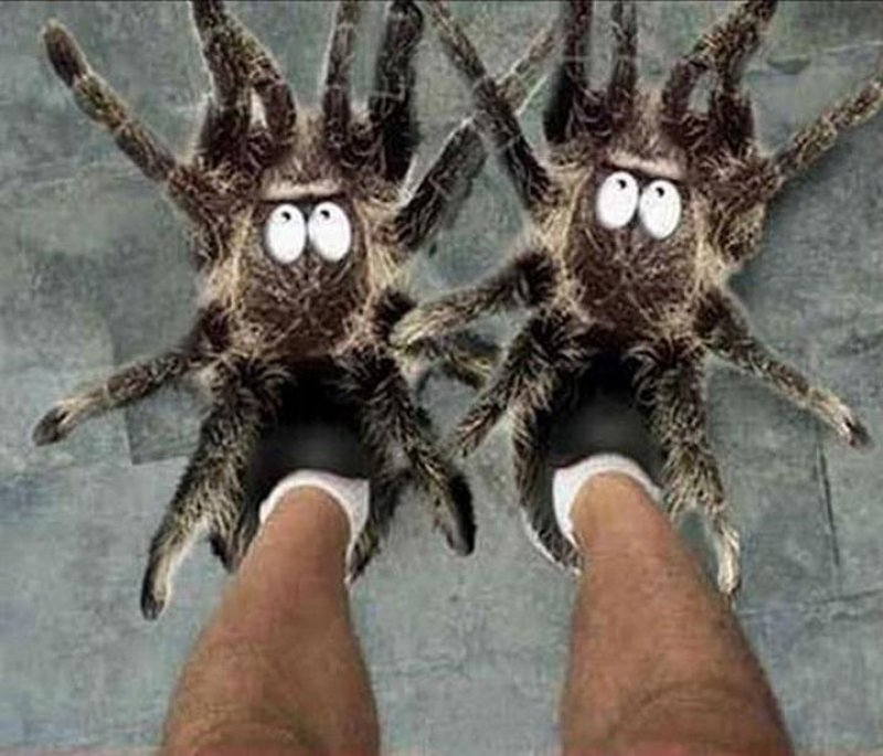 Scary Spider Slippers -12 Craziest Slippers You'll Ever See