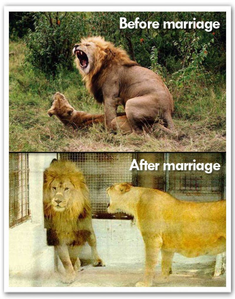Sex After Marriage-12 Hilarious Before And After Marriage Pictures
