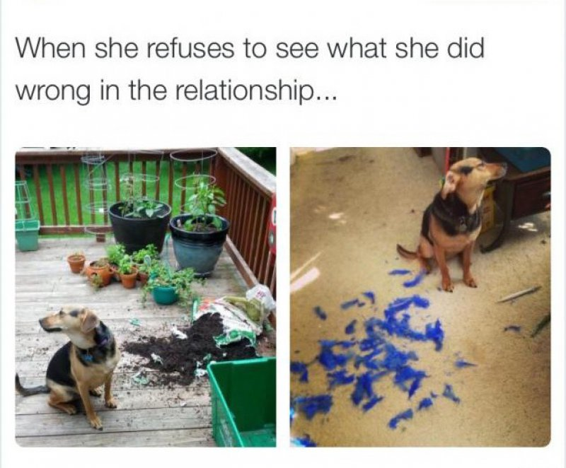 Stubborn Girlfriend Problems-12 Relationships Memes That Will Make You Say So Us