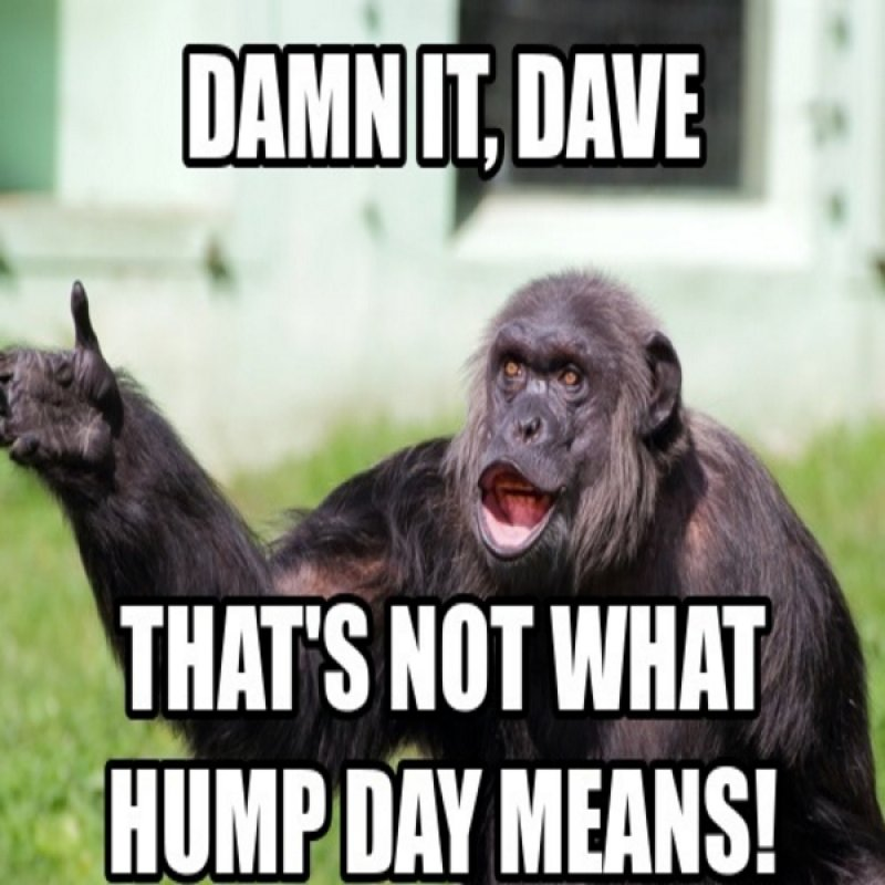 That's Not What Hump Day Means-12 Funny Hump Day Memes That Will Make Your Whole Week