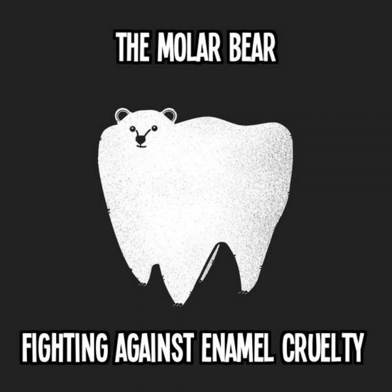 The Molar Bear-12 Hilarious Bear Puns That Will Make You Cry