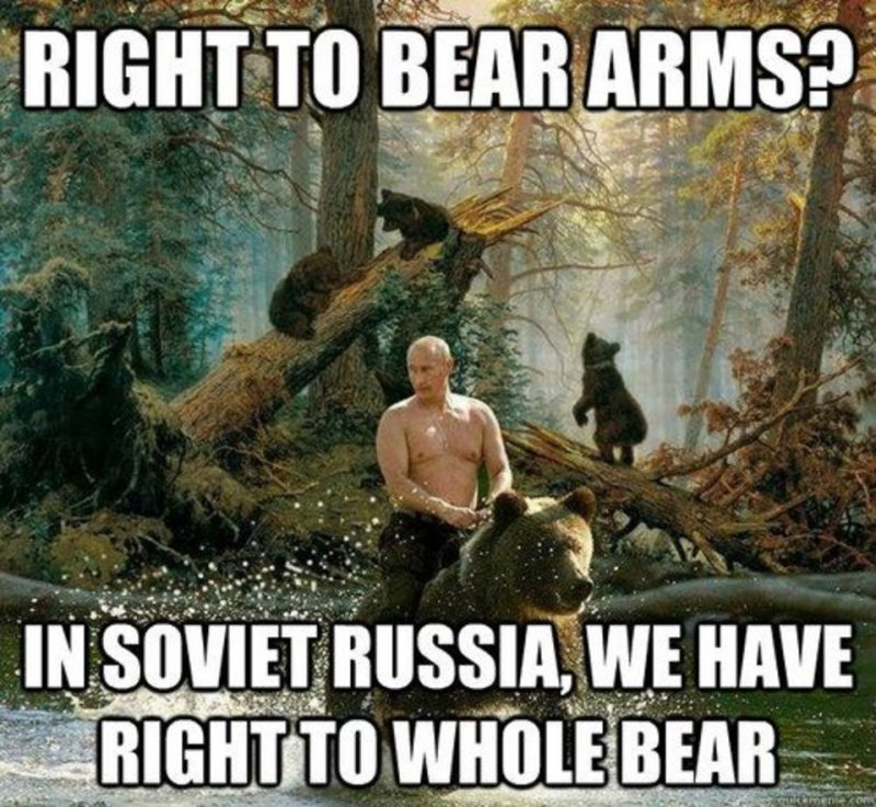 The Right To Bear Arms! -12 Hilarious Bear Puns That Will Make You Cry