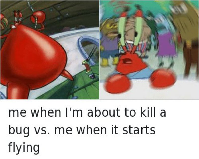 The Struggle Is Real-12 Hilarious Confused Mr. Krabs Memes