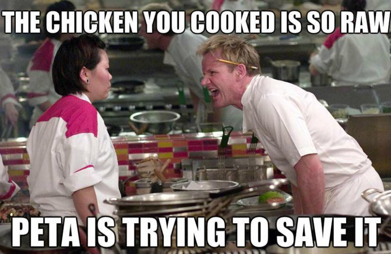 The Uncooked Chicken-12 Hilarious Gordon Ramsay Memes That Will Make You Cry