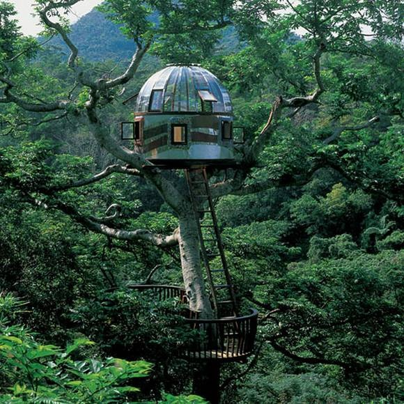 The pod tree house-15 Amazing Tree Houses Ever