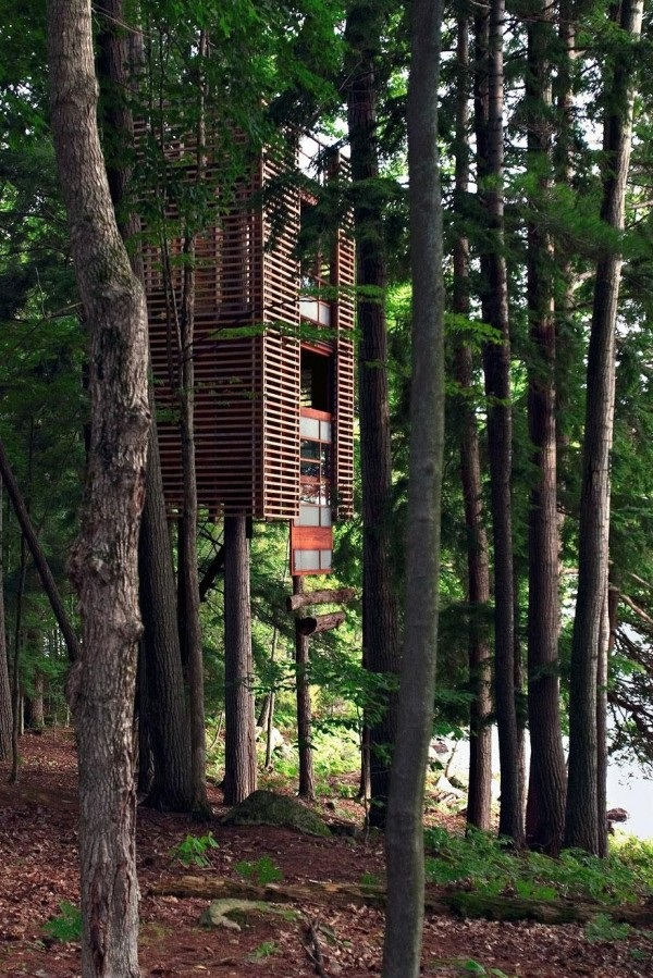 The tree house-15 Amazing Tree Houses Ever