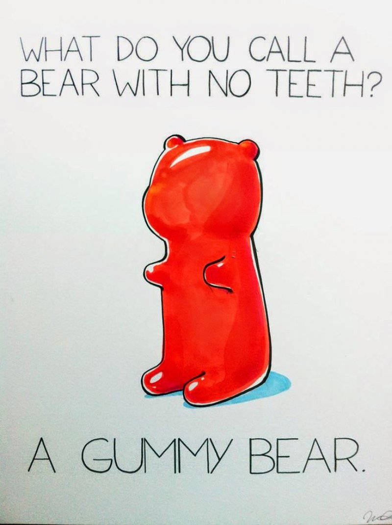 "This ""Punny"" Question-12 Hilarious Bear Puns That Will Make You Cry"