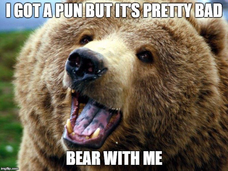 This Bad Pun-12 Hilarious Bear Puns That Will Make You Cry