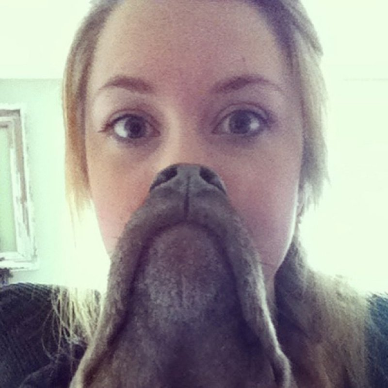 This Classy Look-15 Epic Dog Beards That Will Make You Want To Have One