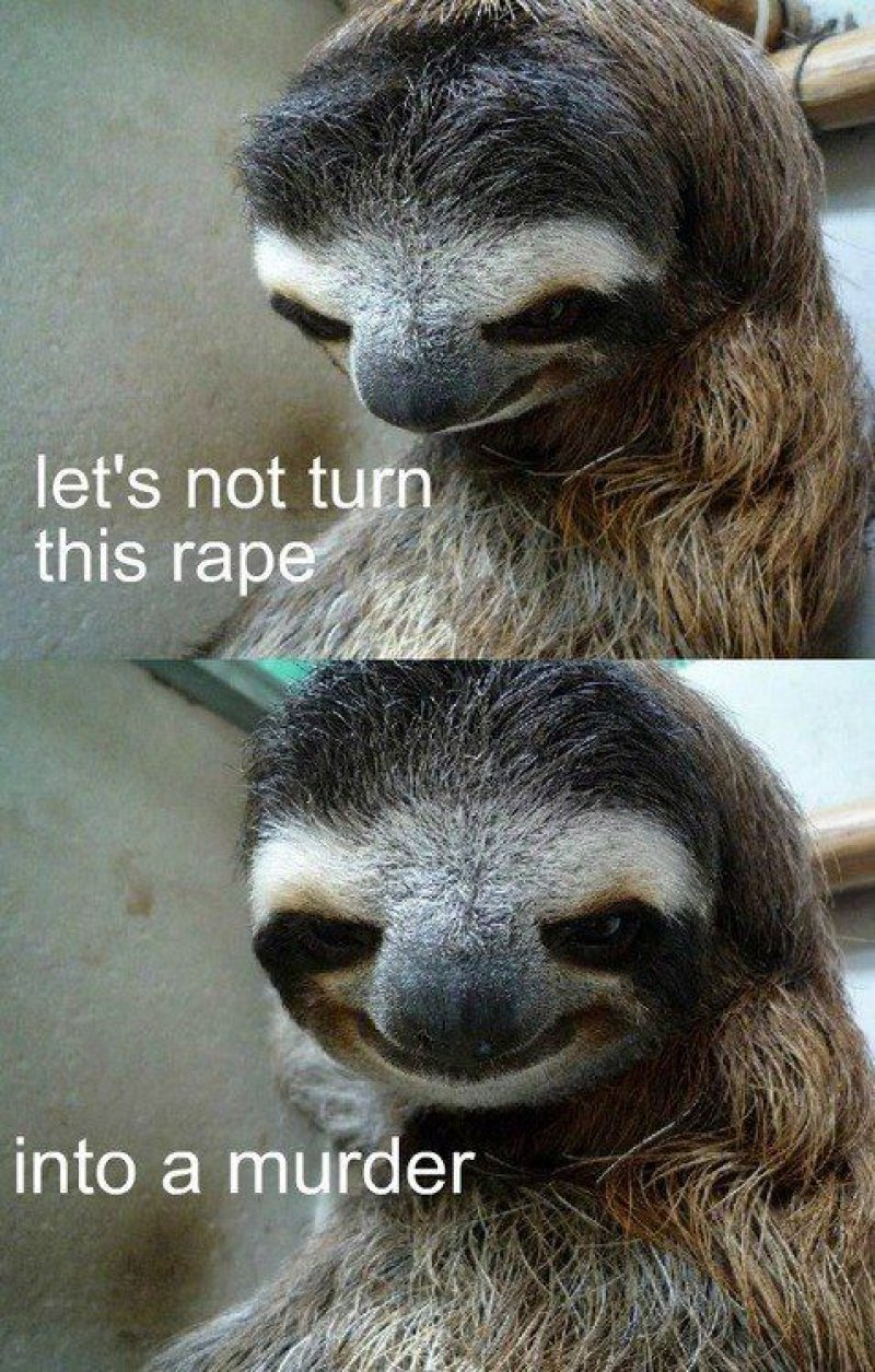 12 Funny Rape Sloth Memes That Will Make You Lol