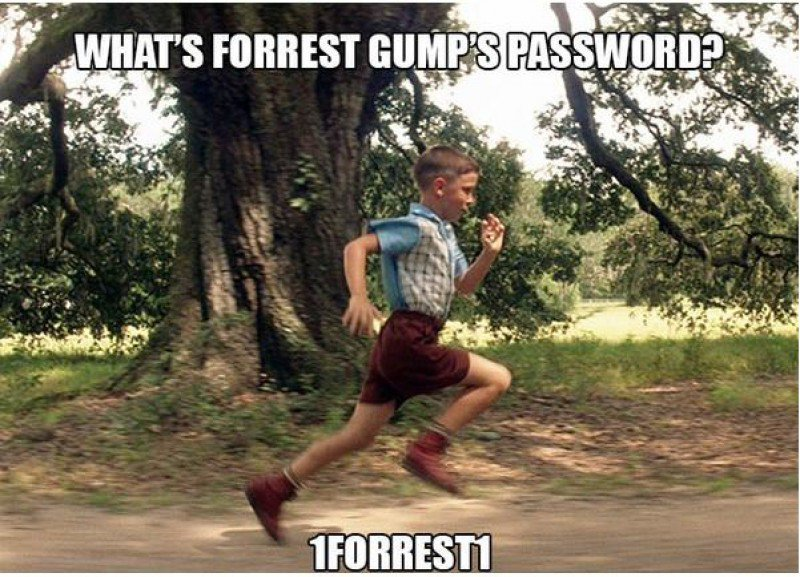 This Forrest Gump Joke-15 Terrible Jokes That Are Actually Funny