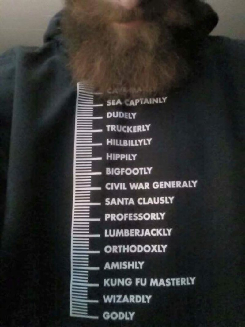 This Funny Beard Scale-12 Funny Beard Memes That Will Make You Lol