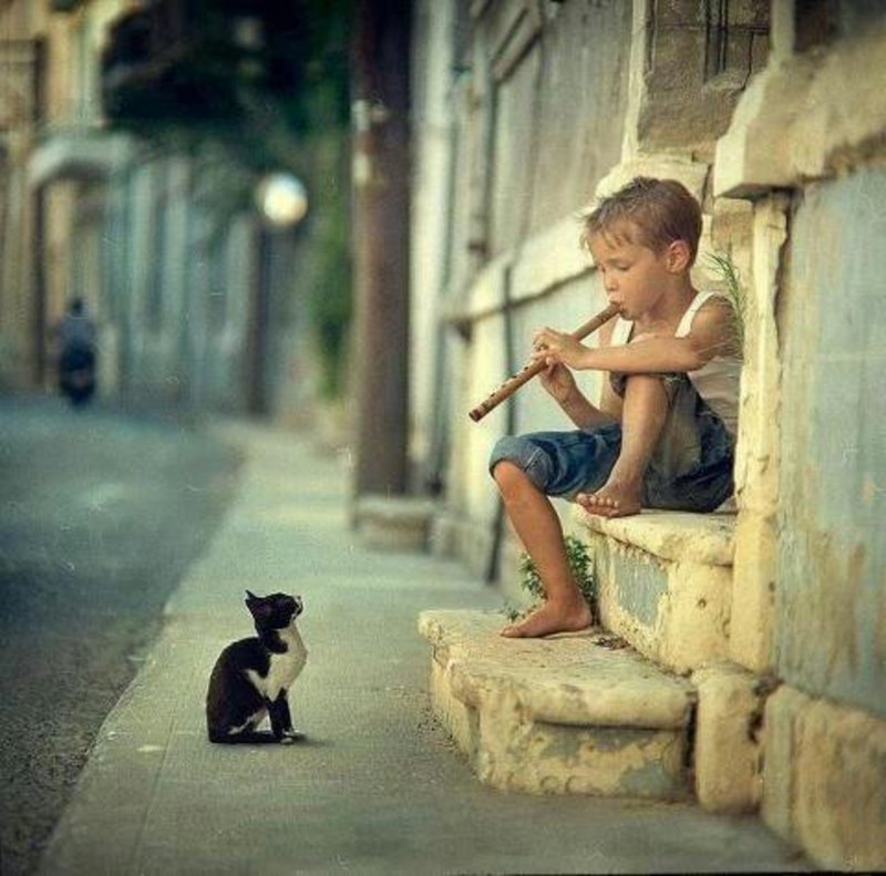 This Little Boy Playing Flute To A Cat-13 Awesome Pictures That Will Make Your Day