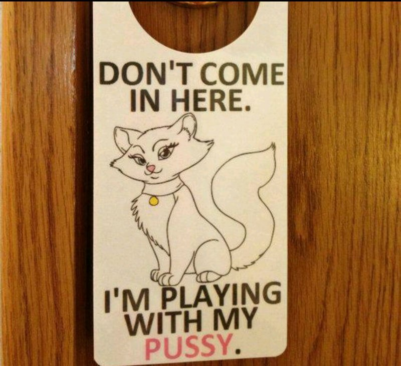12 funniest do not disturb signs that will make you lol