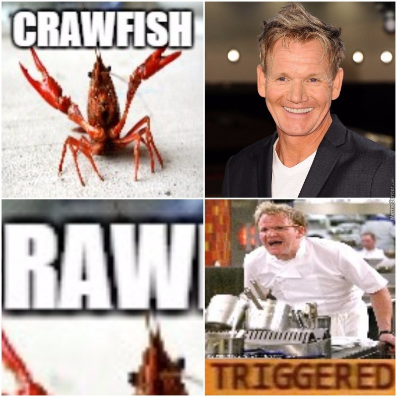 This Is Exactly What Triggers Gordon Ramsay-12 Hilarious Gordon Ramsay Memes That Will Make You Cry