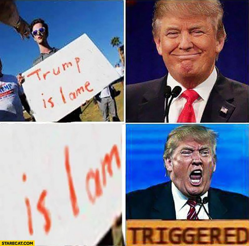 Trump Triggered!-12 Hilarious Triggered Memes That Are Sure To Make Someone Triggered