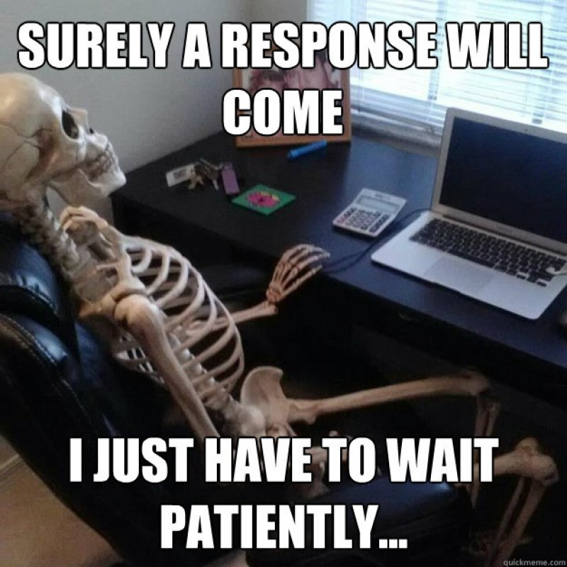 Waiting For A Response!-12 Funny Waiting Skeleton Memes